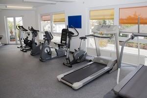 Treadmills Under $500