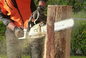 Chainsaws Under $200