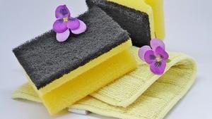 Clean Sponges