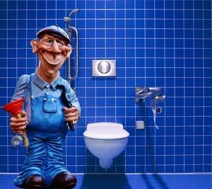 Best Toilet Plungers